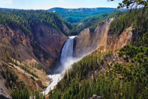 Yellowstone Falls: River, Grand Canyon, National Park, Montana MT
