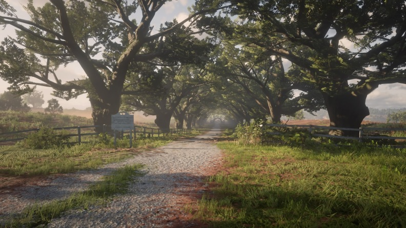 Red Dead Redemption 2_20181209013235