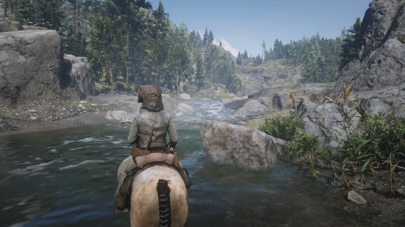 Red Dead Redemption 2_20181209110151