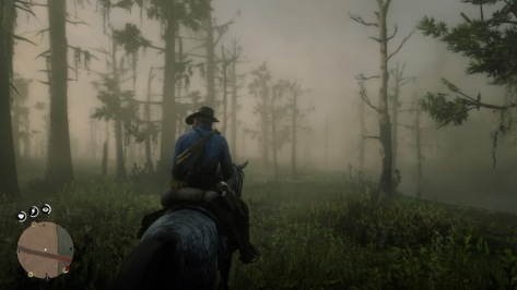Red Dead Redemption 2_20181108231927