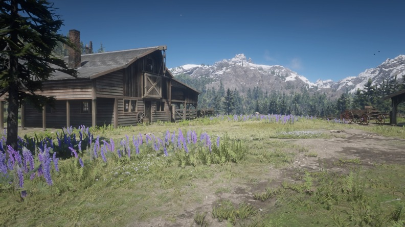 Red Dead Redemption 2_20181111194112