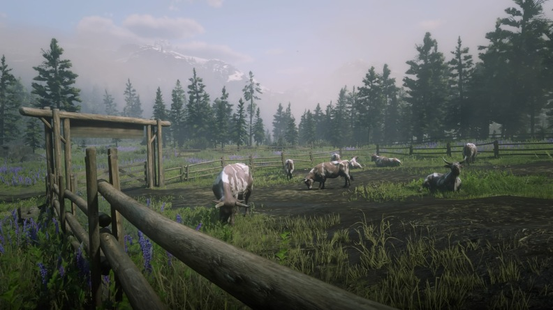 Red Dead Redemption 2_20181111201331